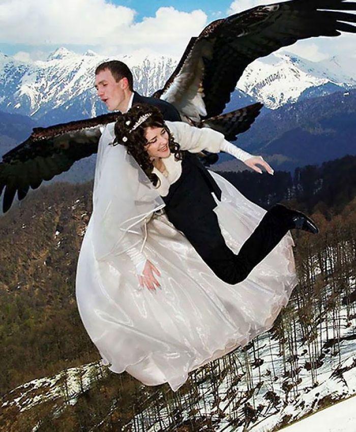 Un aigle arrache sa proie