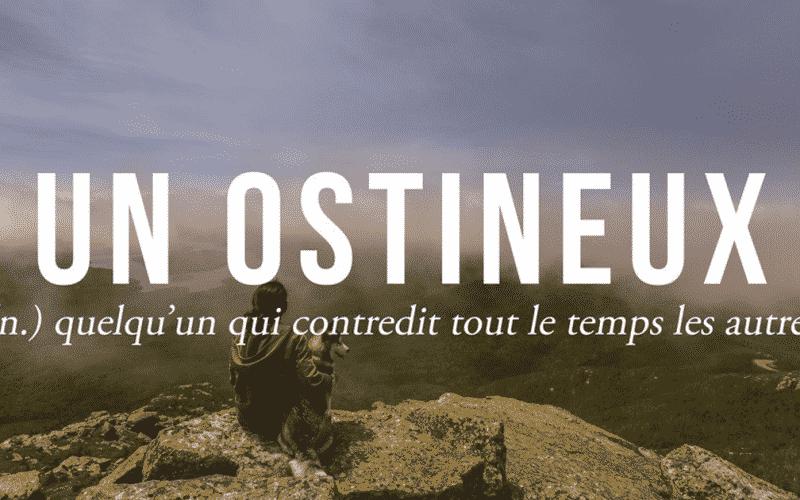 Que Vous Voudrez expressions québécoises : 18 que vous voudrez sûrement vous approprier