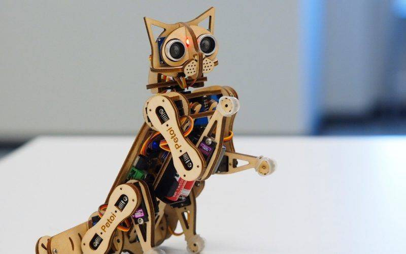 chat robot