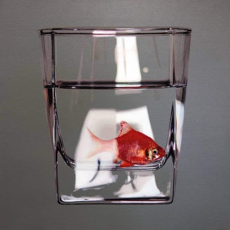poissons emprisonnés dans des bols