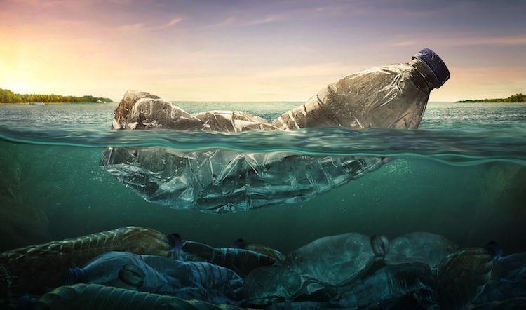 conservation des océans