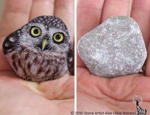 pierres ordinaires en adorables animaux