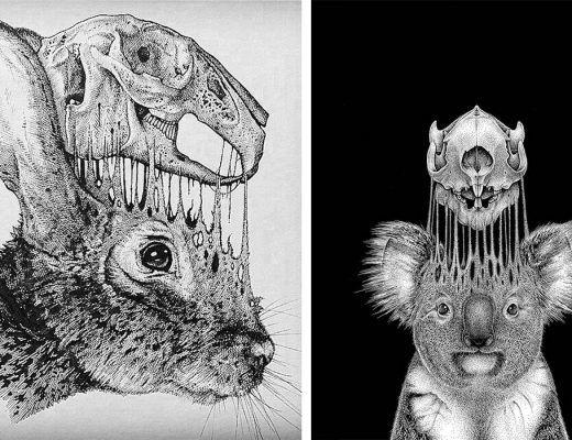 dessins dissèquent les humains