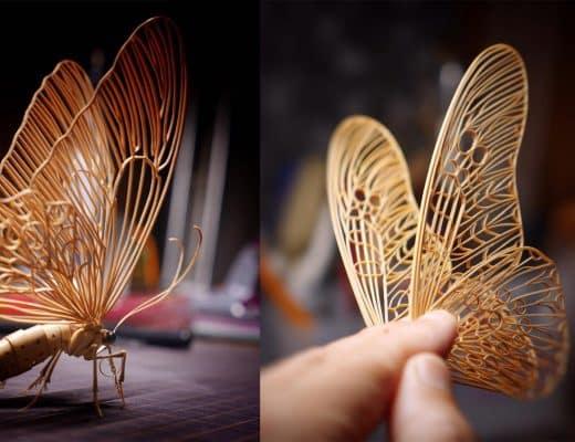 insectes en bambou