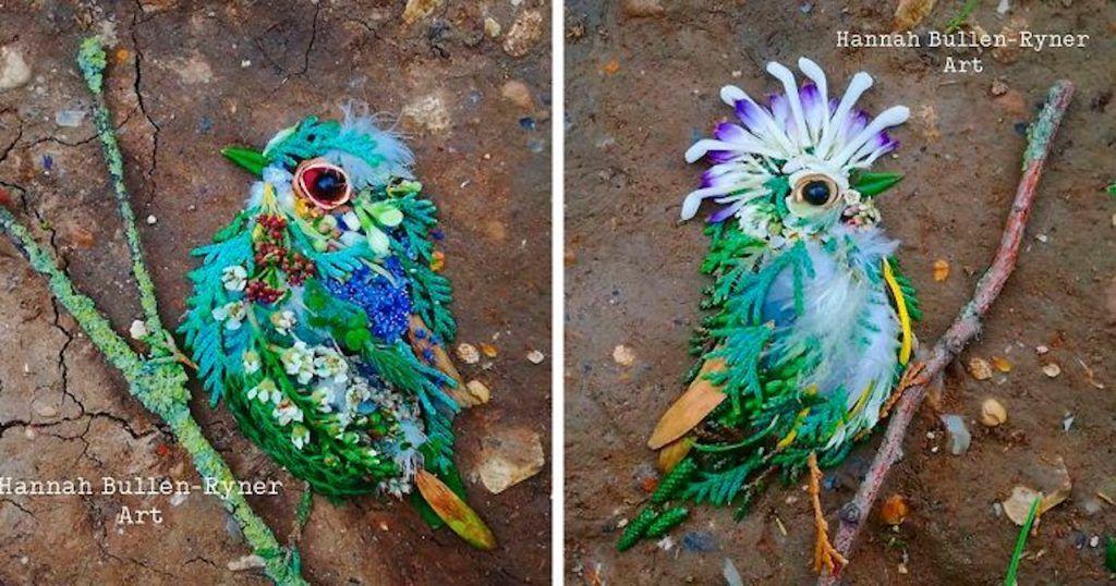 portraits d'oiseaux