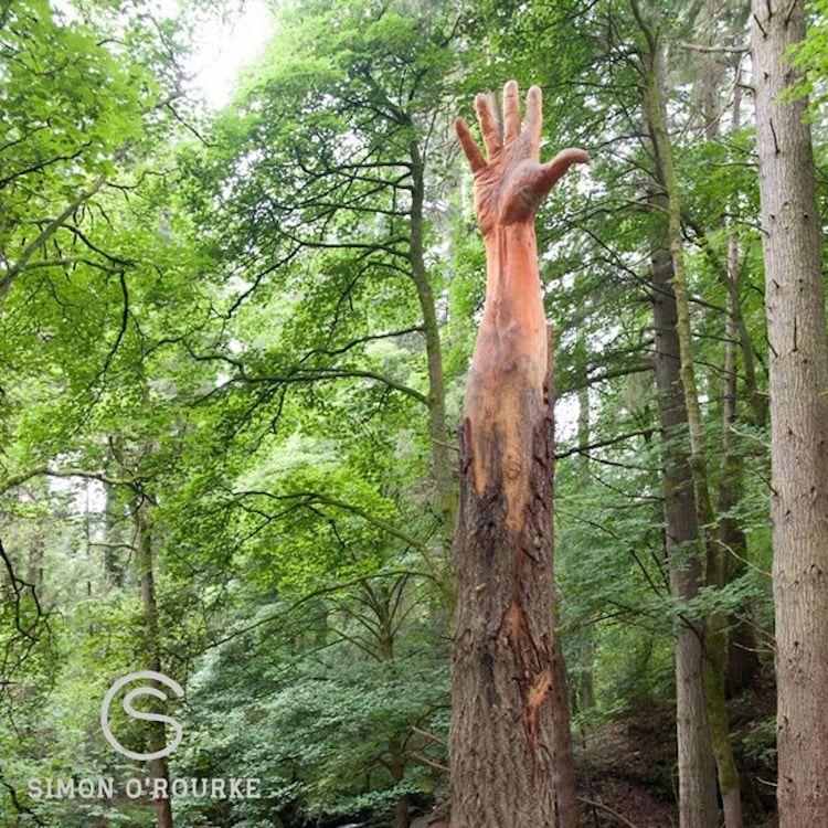 sculpter un arbre mort