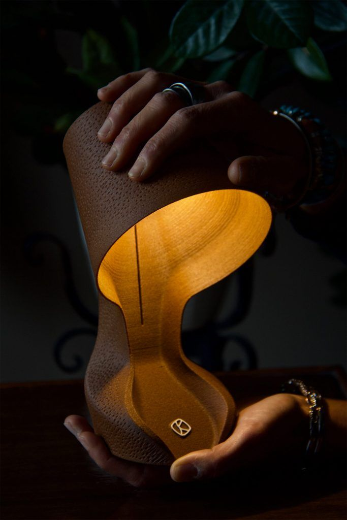 lampe compostable